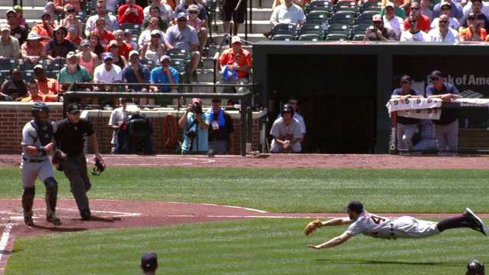 Tigers' Daniel Norris makes great diving catch (VIDEO)