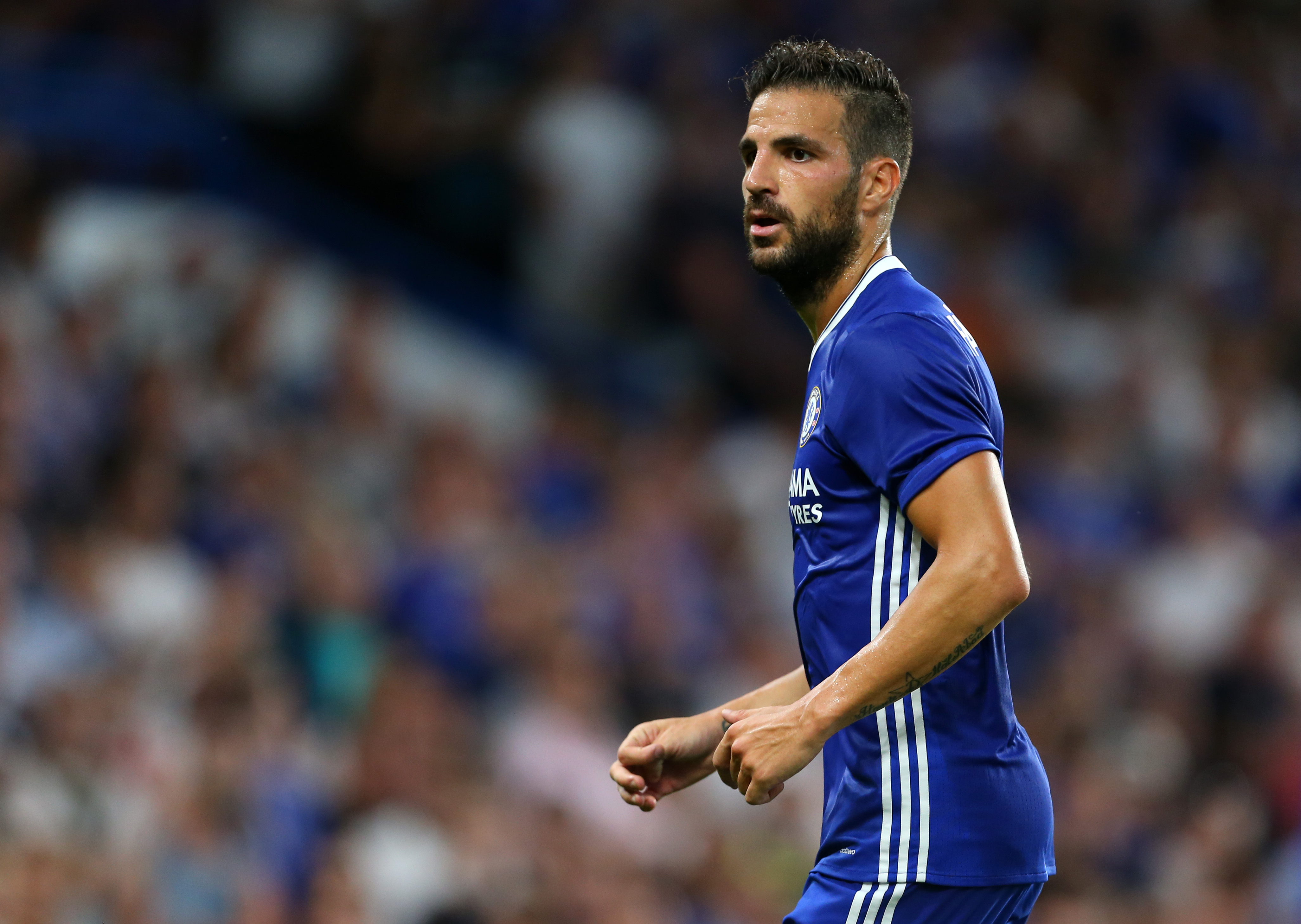 Arsenal Vs Chelsea: Cesc Fabregas Absence Would Be Hugely Beneficial