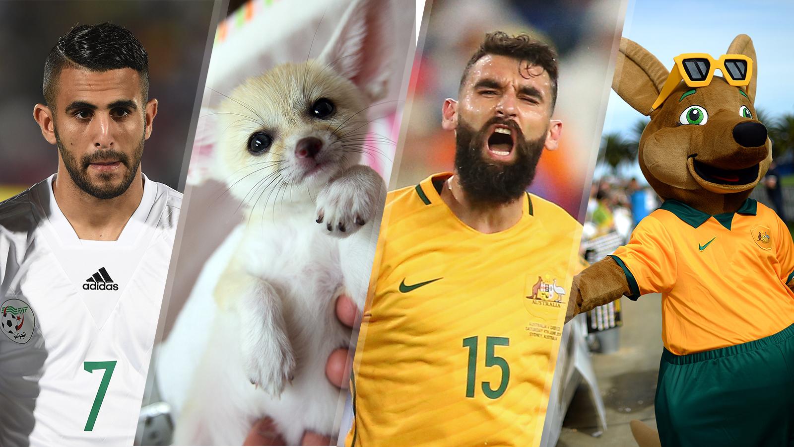 Breaking down the best of the best nicknames in international soccer