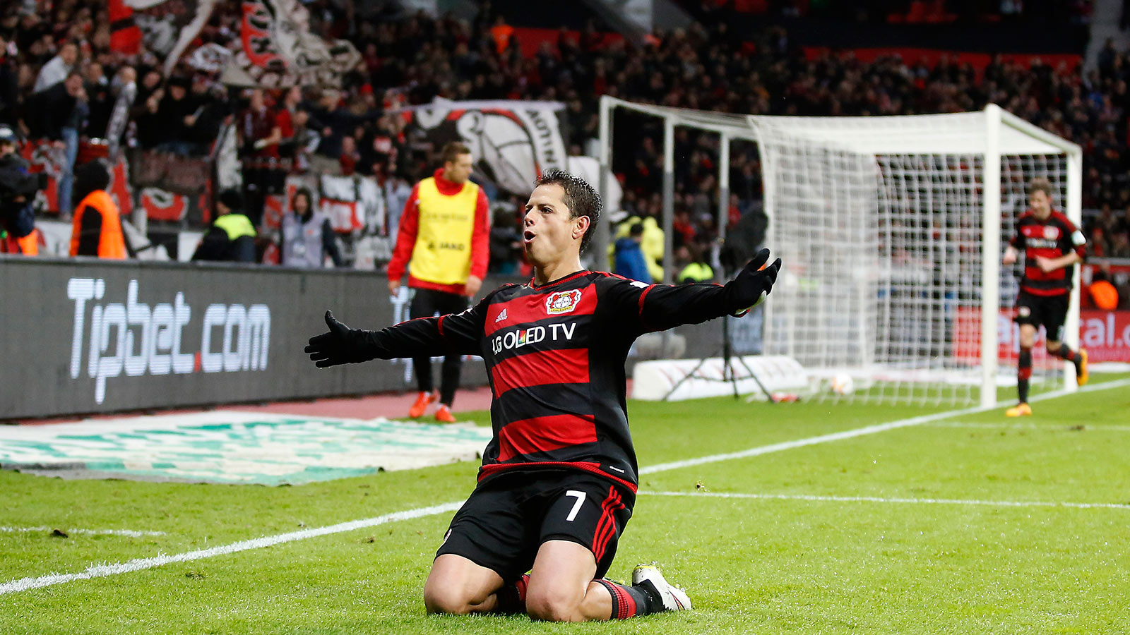 Leverkusen chief not interested in selling Chicharito