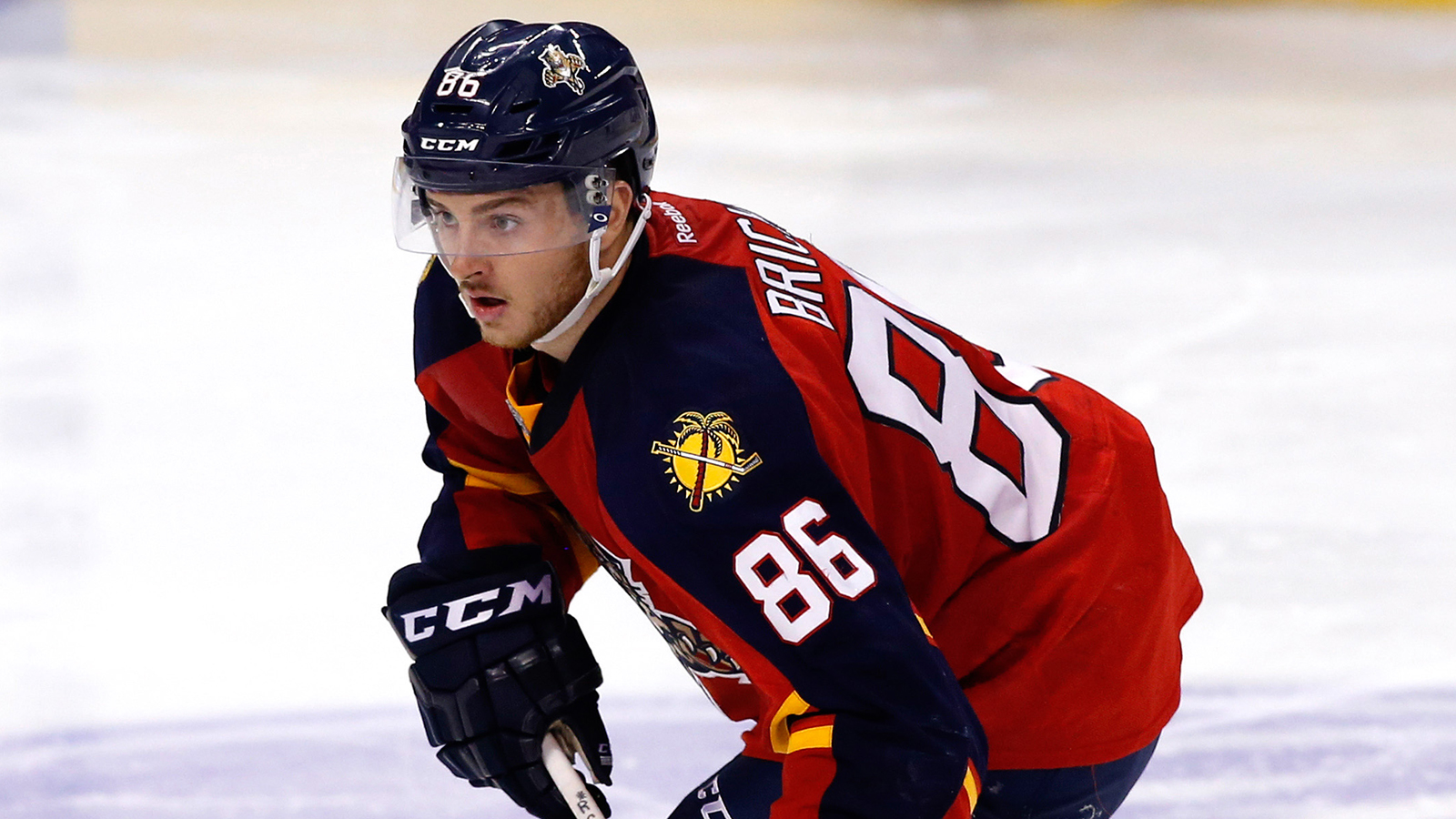 Panthers come to terms on one-year deals with Brickley, Brittain