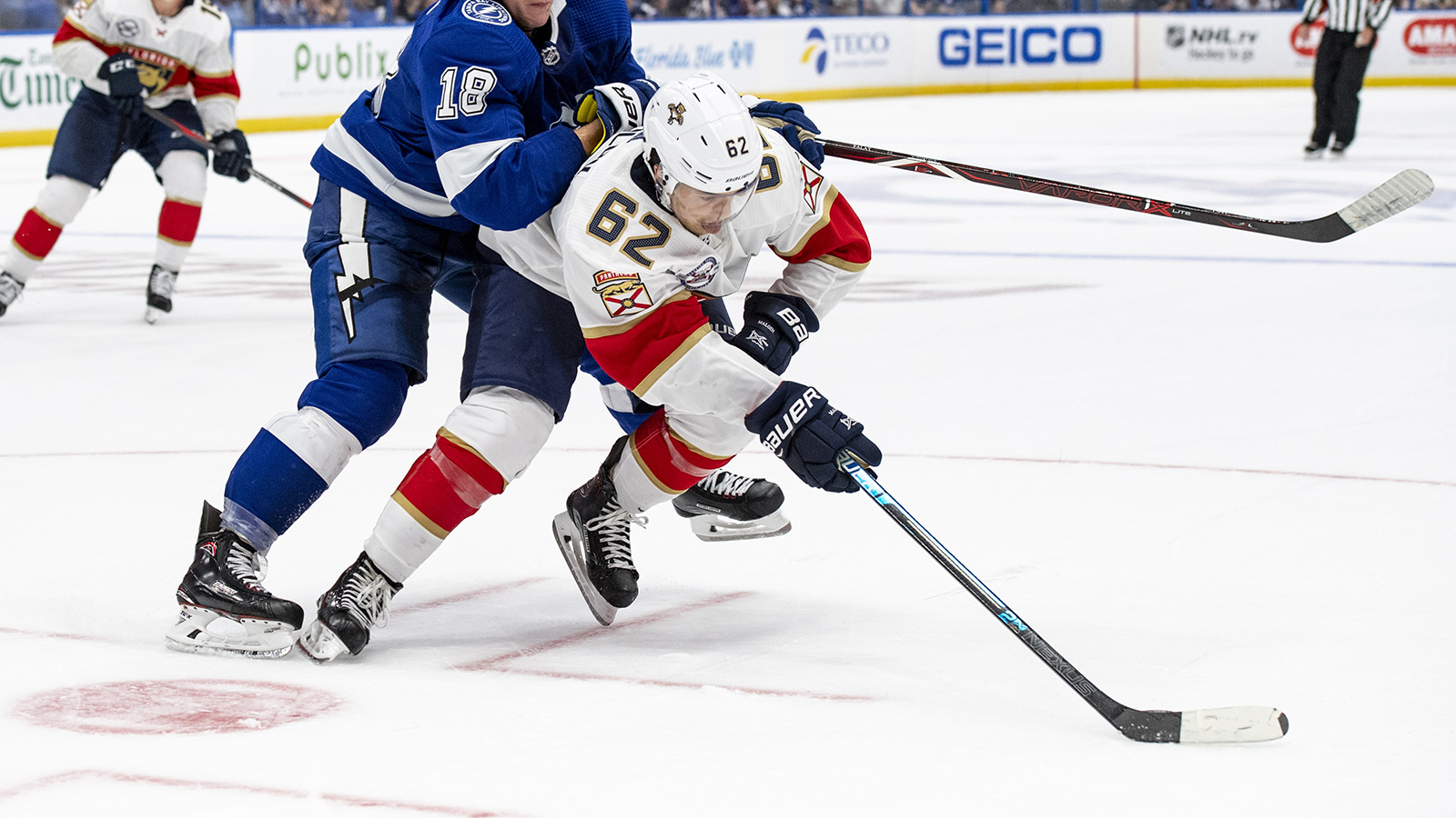 Panthers recall forward Denis Malgin from AHL Springfield