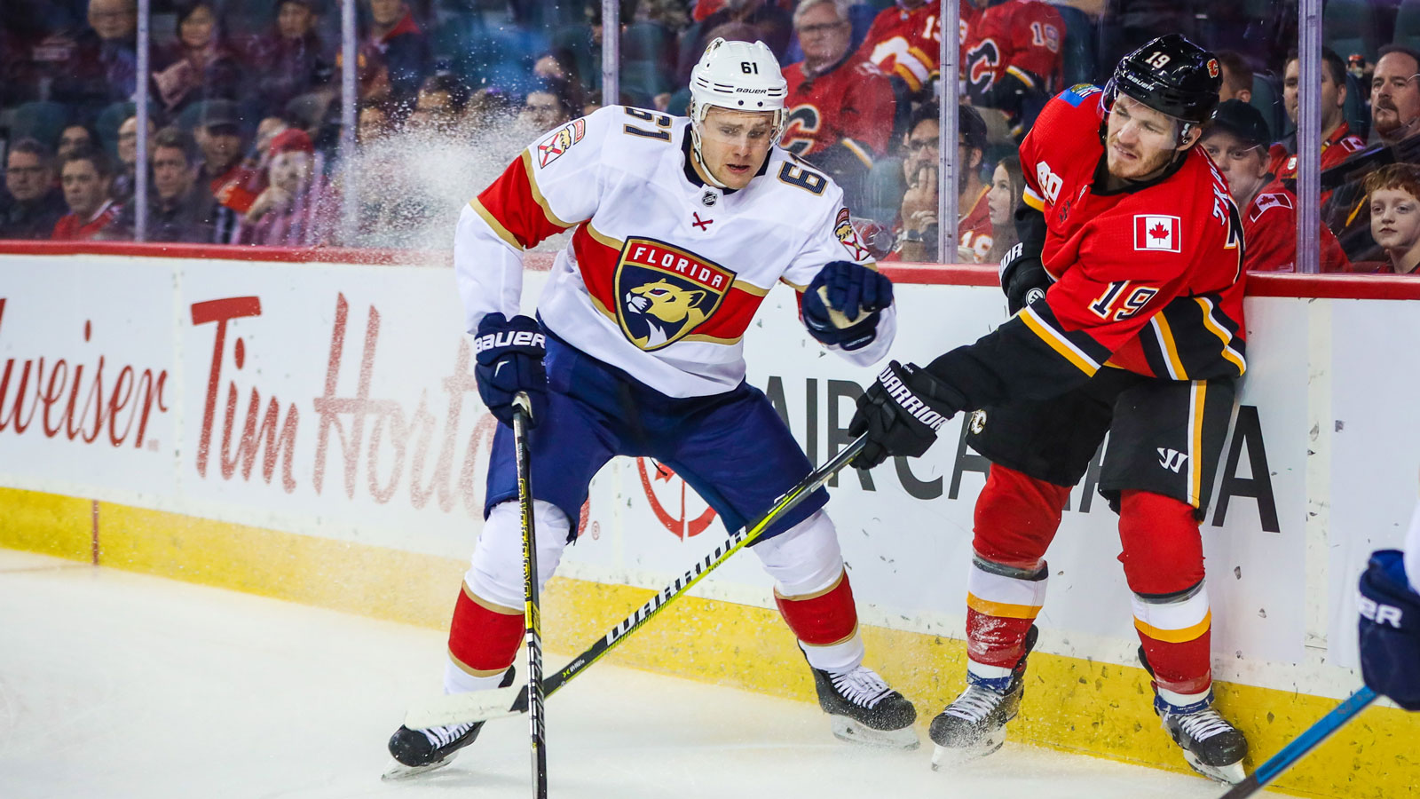 Panthers recall D Riley Stillman from AHL affiliate, Springfield Thunderbirds