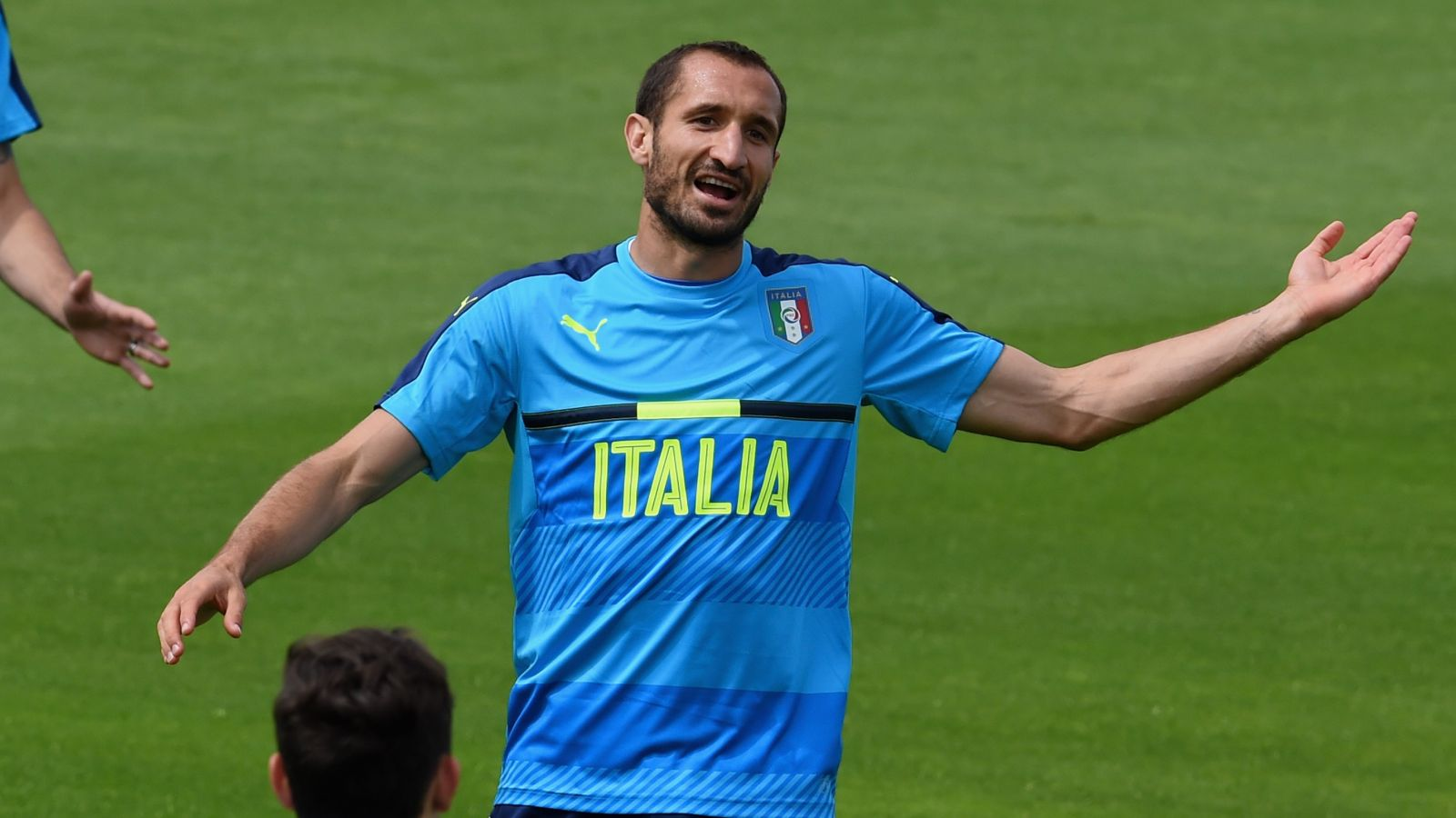 Sweden defender Ekdal says Chiellini can be 'a swine' on the pitch