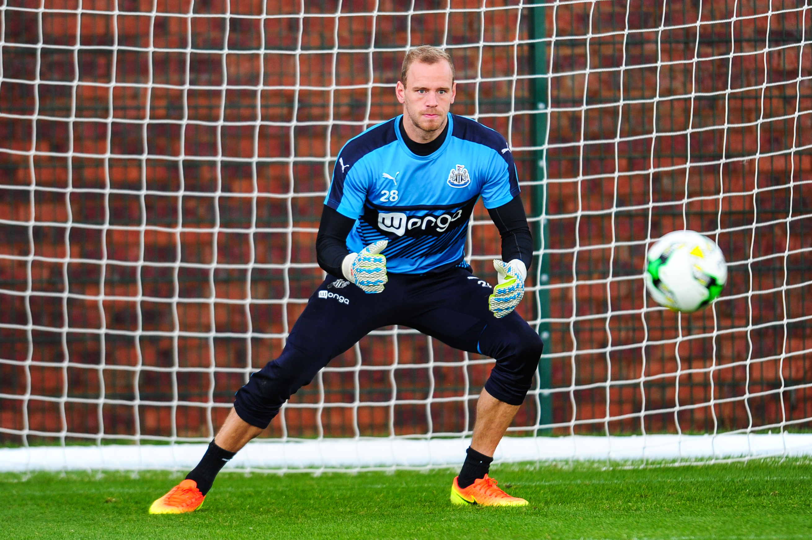 Matz Sels Should Remain Number One for Newcastle United