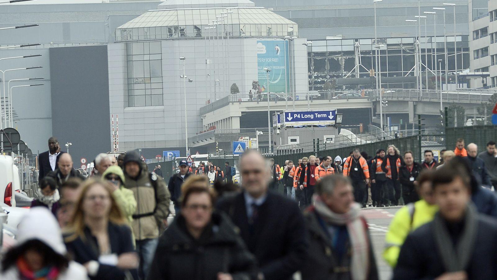 Belgium national team cancel training after Brussels attacks