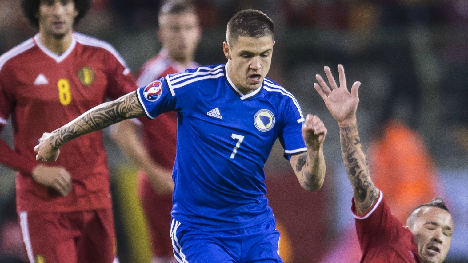 Everton's Mo Besic wore a full kit to cheer on Bosnia-Herzegovina ... from the couch