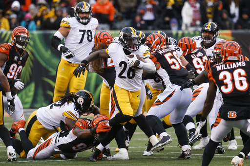 Boswell's 6 field goals lead Steelers over Bengals 24-20 (Dec 18, 2016)