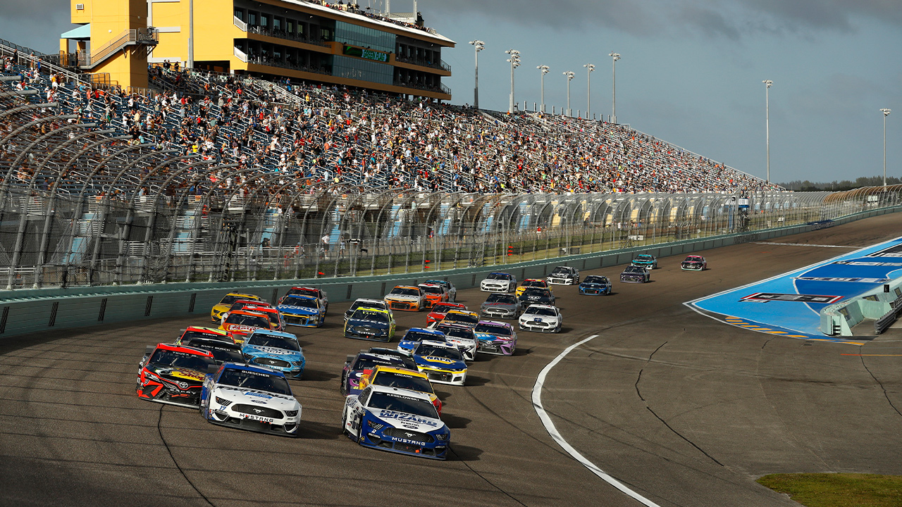 NASCAR To Use Dogs To Detect COVID-19 At Atlanta Motor Speedway